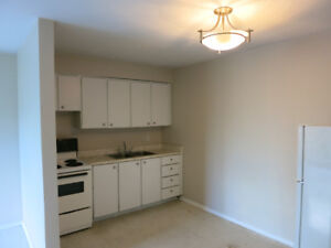 Bachelor / Studio in Corktown - close to amenities