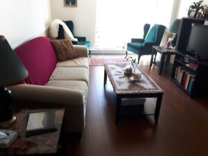 Fully Furnished 1 Bedroom Apt Available Jan 1st * 4 Months+