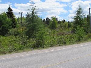 12 ACRE RIVERFRONT ESTATE…181 SALMONIER LINE, HOLYROOD. St. John's Newfoundland image 17
