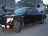 2013 Ford F-150 fx4 pick up