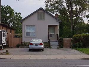 Hamilton Mountain - Spacious 2 Bed Bsmt - Utilities Included