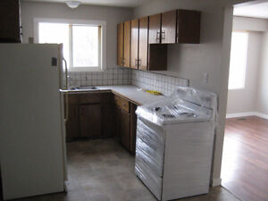 Brightly lit 3 bedroom 1.5 bath duplex for rent