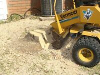 AFFORDABLE STUMP REMOVAL / STUMP GRINDING
