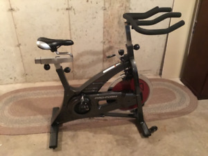 ProForm 590 SPX Exercise Spin Bike-Mint Condition.