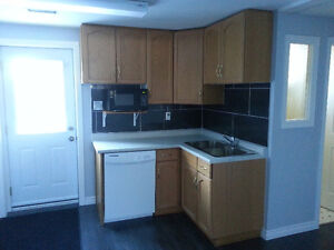 *** Walk-Out Basement Apartment with Backyard! ***