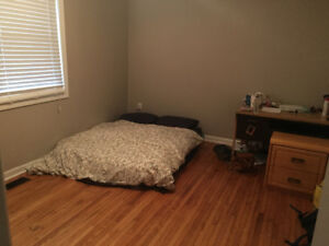 Looking for sublet for Jan