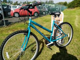 Adults Northpeak mountain bike