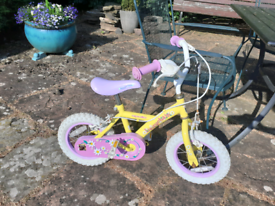 Apollo Bike FREE