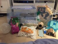 Hamster cage with all equipment you need