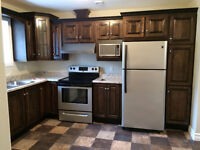 Beautiful Apartment for rent in Clarenville