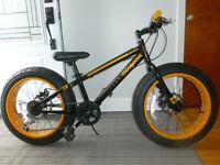 fat bike pour enfant roue 20 pouces frein a disque 7 vitesse