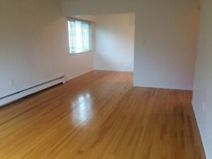 One Bedroom spacious and bright apartment - (March Rent is Free)