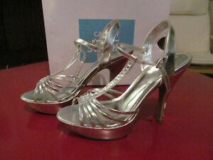 Chaussures de soirée argent / Silver dress shoes