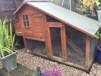 X2 Guinea pigs and X1 rabbit indoor hutch and large outdoor hutch