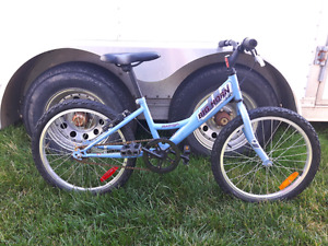 Bicycle 20 inch Bighorn Raleigh