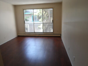 A nice and cozy 1 BEDROOM suite on Whyte ave.