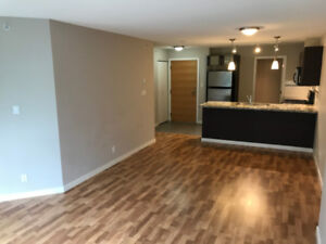 1 BEDROOM FOR RENT IN DOWNTOWN RICHMOND!