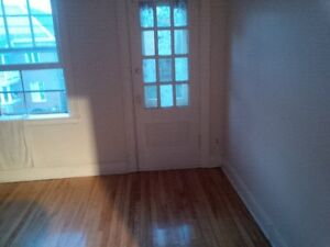 Renovated 3bd apt in SandyHill for rent