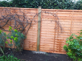 Fencing and landscaping work. Garden services