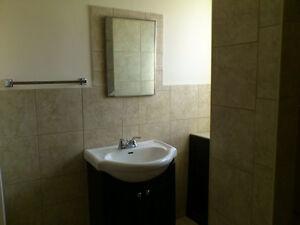 Air Condationed  4 Bedroom House for Rent Regina Regina Area image 7