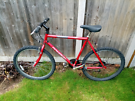 Raleigh firefly mountain bike, must sell this weekend