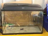 "28"" by 14"" aquael fish tank"