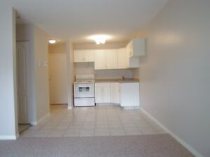 MODERN Condo 1 Bdrm CATHDERAL close downtown Now or Oct  Regina
