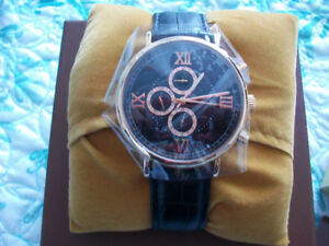 Christian Van Sant Brand Somptueuse Men's Watch - New