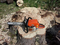 Tree Removal / Garbage Removal / Demolition / 646-0232