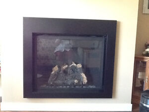 Napoleon HD40 gas fireplace