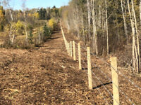Land Clearing and Mulching:  fast and affordable