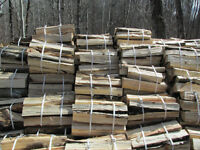 SPLIT, DRIED AND BUNDLED POPLAR FIREWOOD FOR SALE