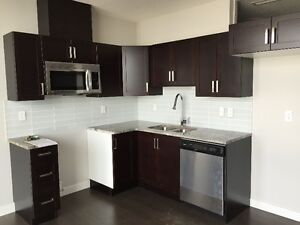 Ice District Ultima downtown condo 1 bdrm-Free Internet & Cable