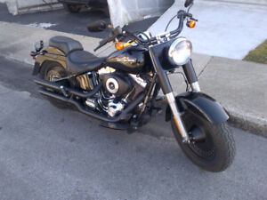 Custom 2001 Harley Davidson Fat Boy