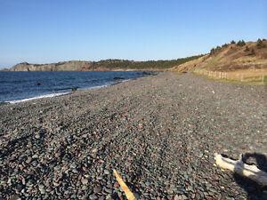27 JIM WALL'S ROAD, GASTERS COVE, HR.MAIN….OCEAN VIEWS St. John's Newfoundland image 14