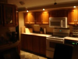 WATERFRONT home on 1.33ac and 1180sq,ft one level floor Windsor Region Ontario image 7