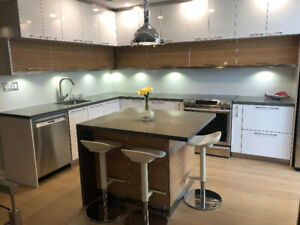 AMAZING MODERN SYNNY 1900sq on two levels, TWO PATIOS BBQ
