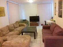 looking for a couple or 2 friend $270 near UNSW kingsford Kingsford Eastern Suburbs Preview