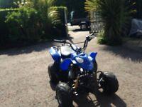 110cc automatic quad