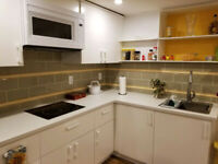 ONE BED ROOM FULLY FURNISHED BASEMENT APT$$