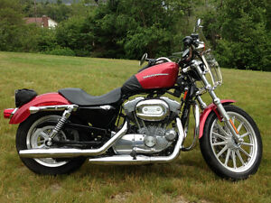 Harley Davidson 883 Sportster For Sale