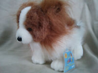 RARE AND VERY HARD TO FIND WEBKINZ PAPILLON DOG WITH NEW CODE