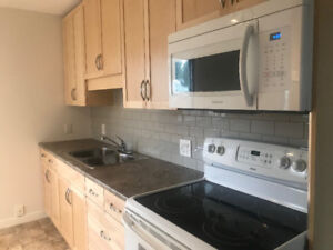 Newly Renovated Main Floor of House for Rent