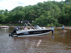 2012-18 ft Legend fish 'n ski, 115 4 stroke Mercury