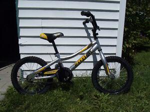 Vélo pour enfant 3 a 5 ans Marque RALEIGH Lac-Saint-Jean Saguenay-Lac-Saint-Jean image 1