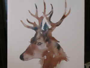 "Canvas print of deer (stag) -- 15"" square, perfect condition"