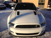 2013 Ford Mustang CS/GT 3.73 Gears Week-end Sale Only!!!