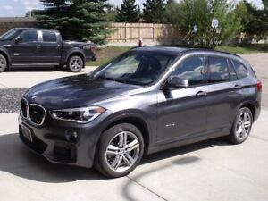 "2017 BMW X1  ""M  Package""For Sale"