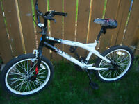 BMX 20 Bicycle