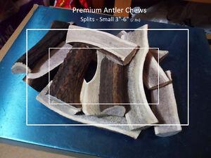 Fresh antler dog chews (Best price, best quality) Gatineau Ottawa / Gatineau Area image 2